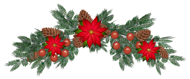 Noel fleurs plantes - Sapin de noel en anglais ...